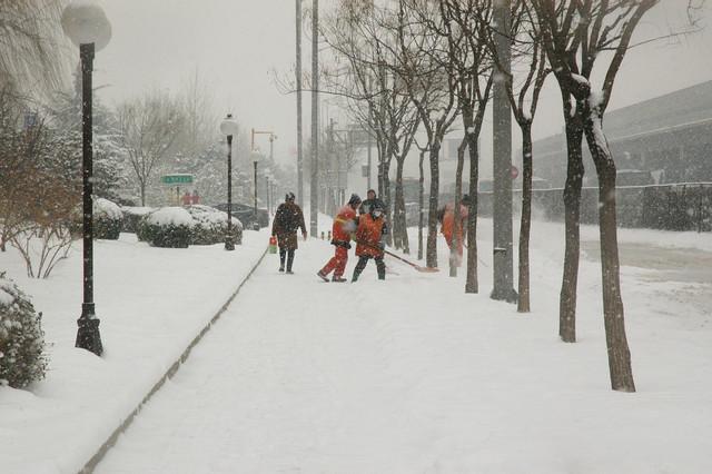 snowfall-15980-1280