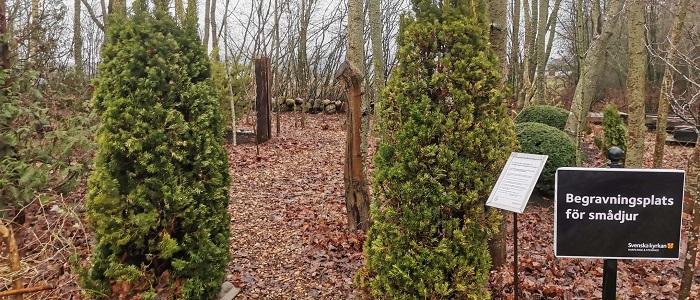 Begravningsplats för smådjur