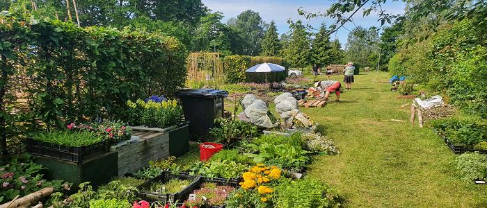 5 unika idéträdgårdar