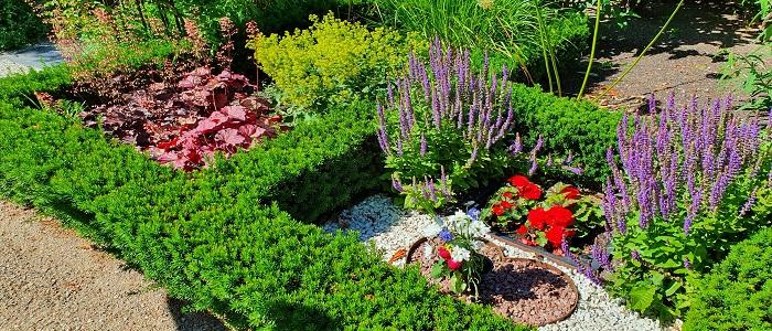 Kyrkogårdens Växtmaterial Webbkurs