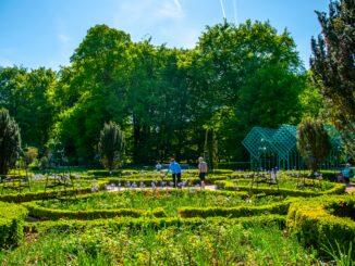 Hur utvecklas parkerna och naturmarken